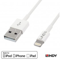 USB to Apple Lightning Kabel